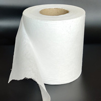 Factory Supply 25g 100% polypropylene BFE95 Filter Non Woven Meltblown