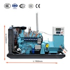 Gas Power Generator Natural Gas Power Generator 50KW Natural Gas Generator 62.5KVA Gas Factory Generator