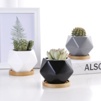Wholesale geometric design small cute succulent pots ceramic pots for succulent plants