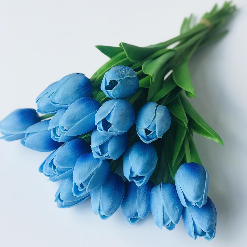картинки голубые тюльпан она