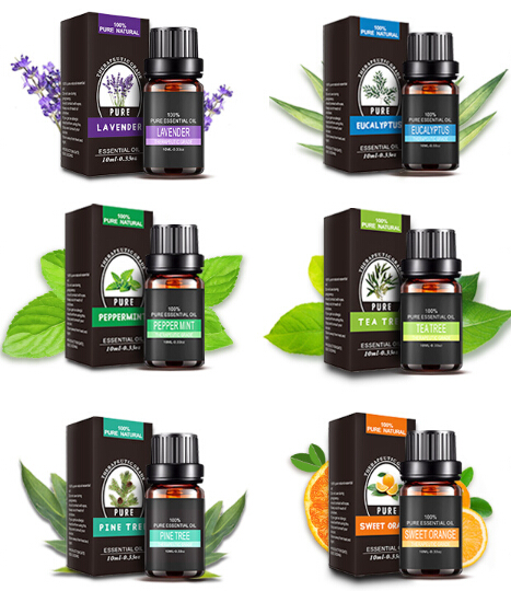 Natural OEM Organic Aromatherapy Massage Body Fragrance Essential Oil ( Sets )