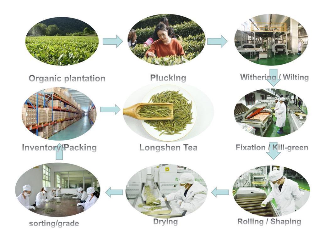 4A-2020 China New Organic Green Tea Healthy Maofeng Tea per kg price - 4uTea   4uTea.com