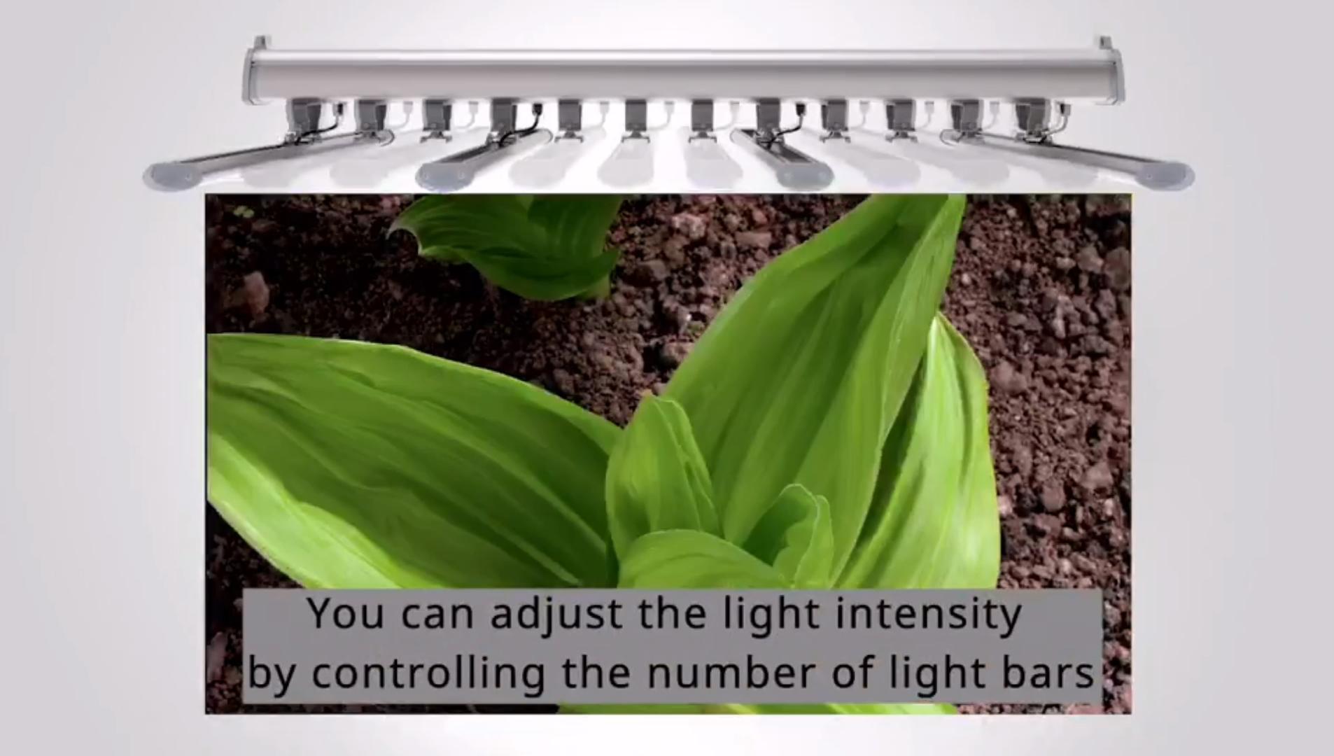 럭스 새로운 DLC ETL CE ROHS 방수 실내 풀 스펙트럼 디밍 1200w 1500w 식물 성장 빛 IP65 LED 조명