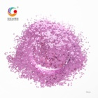 Star Star All For Decoration GH2704A Best Selling Copper Solvent Resistant Star Shaped Glitter Powder For Birthday Party Decoration