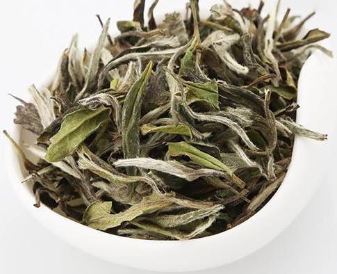 China Fujian White Tea Wholesale White Peony Organic Healthy Slimming Tea - 4uTea | 4uTea.com