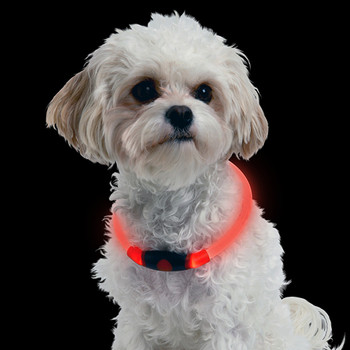 CC Simon 2020 USB Rechargeable Glowing Pet Collars Lighted Up Safety Necklace Glow in The Dark for You & Your Dogs