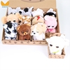 /product-detail/mmck-12-suits-world-dreamy-eyes-big-eye-animals-fox-sheep-dog-bear-mouse-chick-rabbit-penguin-bird-crow-stuffed-plush-toys-62293903400.html