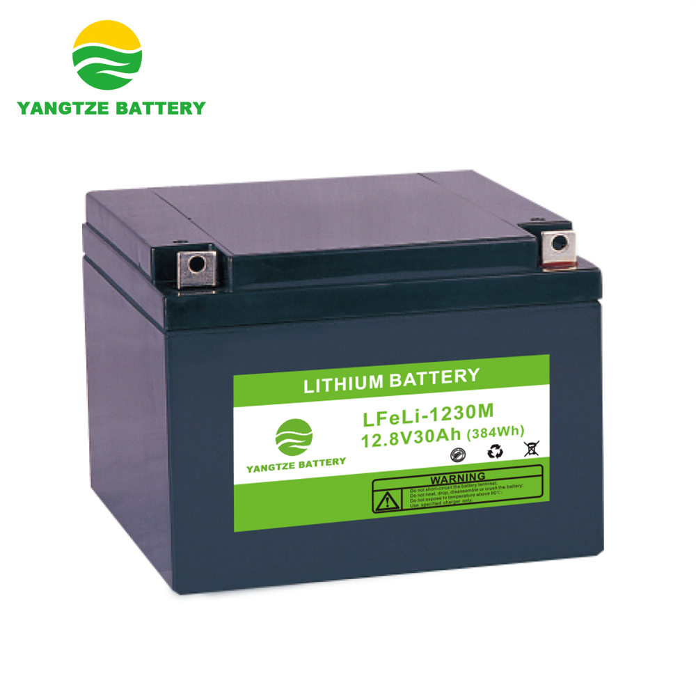 12+ years life lithium lifepo4 battery pack lifepo4 12v 48v 24ah 25ah 30ah