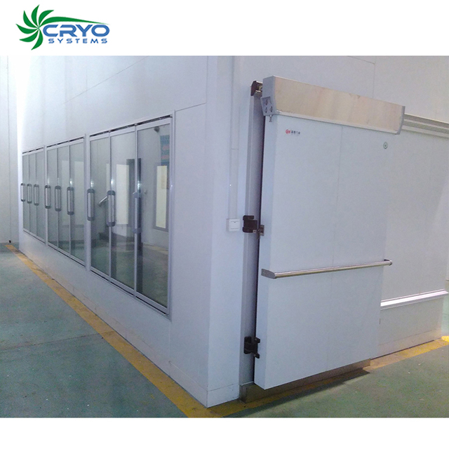 fresh drumstick vegetable fresh garlic cold room quick freezer star cold storage coolroom panels for sale