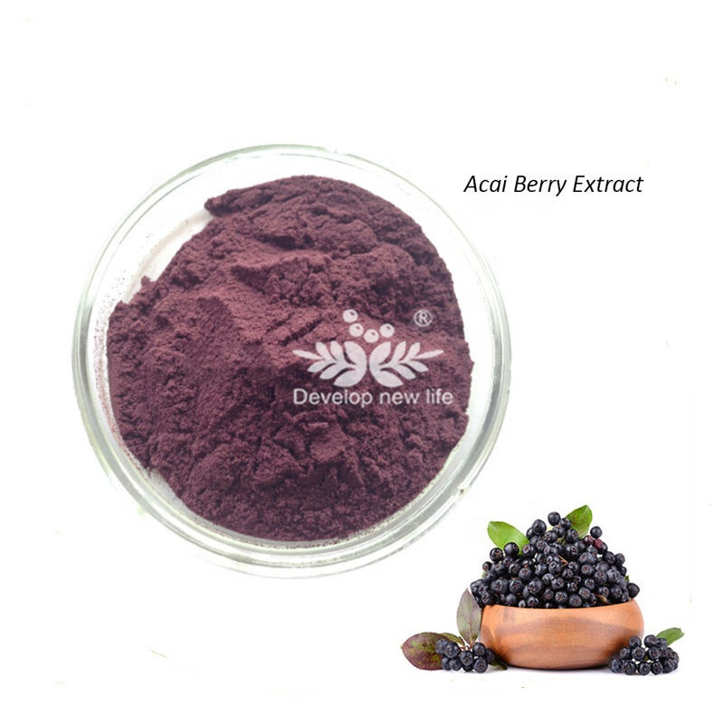 Best selling organic natural acai berry <strong>powder</strong> brazil/100% natural Acai Berry Extract / Brazilian Acai P.E./