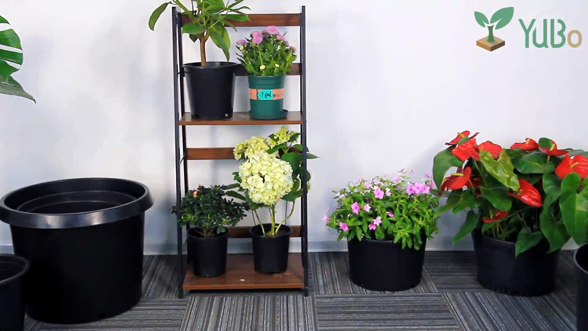 cheap plastic 1 gallon pot outdoor, black plastic nursery flowers