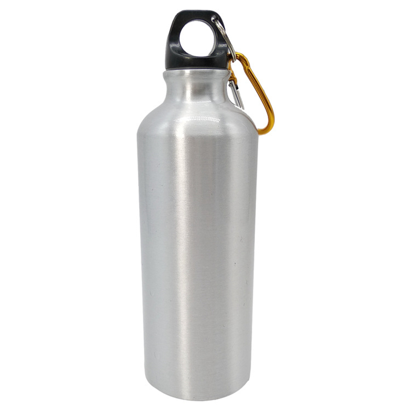 PROMO 304 Stainless steel water Bottle 500ML 750ML bottles with Carabiner