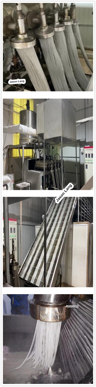 GYJL-2020 고구마 당면 국수 압출기 기계