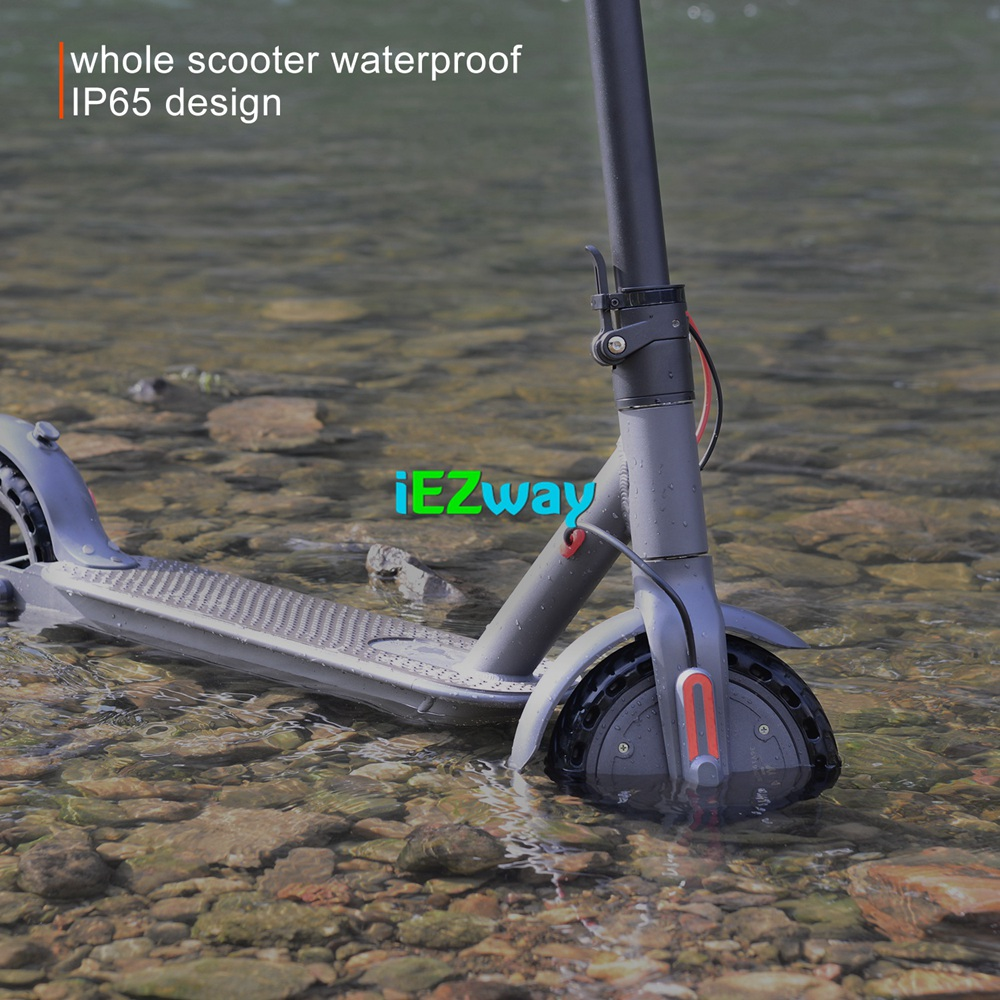 2019 iEZway China Factory New Product Electric Scooter Foldable With 2 Wheels For Xiaomi M365