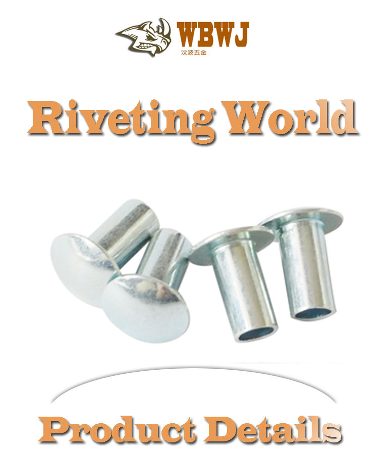 White galvanized metal fittings fastener round head hollow metal rivet