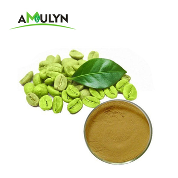ISO Certified 100% Natural Plant Green Coffee Bean Extract