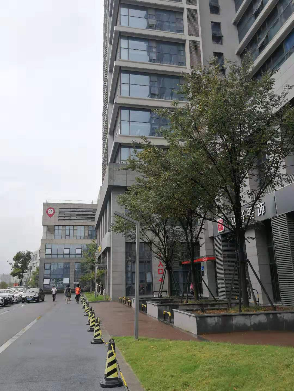 Xe lăn Điện Trọng Lượng Quy Mô Các Bộ Phận Sản Xuất tại Trung Quốc