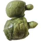 Products Hot New Products Engrave Animal Cute Tortoise Jade Hand Carved Jade Turtle