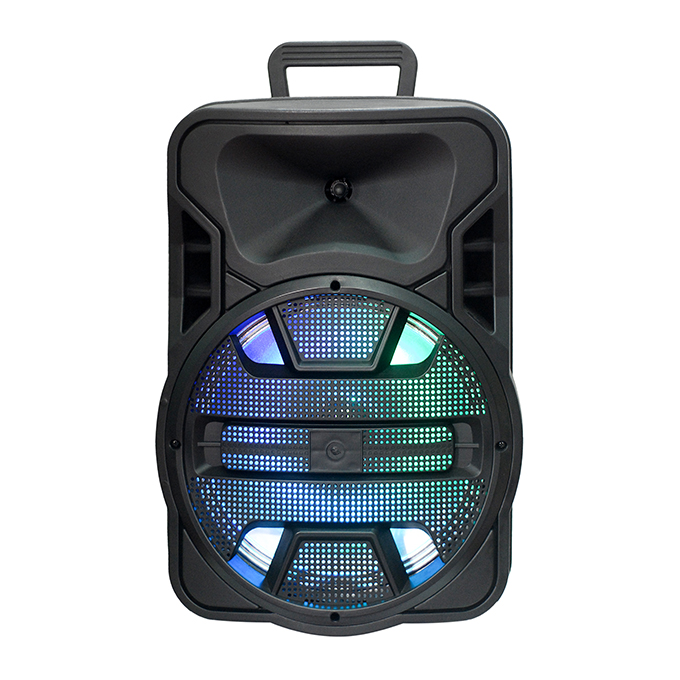 Promotion 12 Inch Portable Speaker with Wired Microphone RGB LED Light in Stock for Wholesale