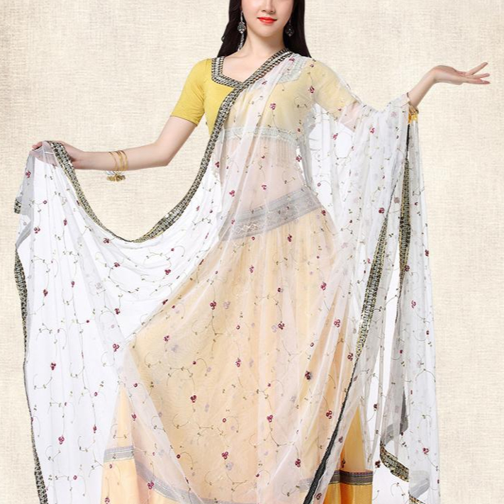 Ricamo Costume di Ballo Per Adulti India Sari Gonna Donna saree asiatico vietnam vestito indiano malesia
