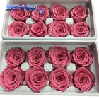 Alibaba Cheap Wholesale Ecuador Rose Import Natural Preserved Flowers