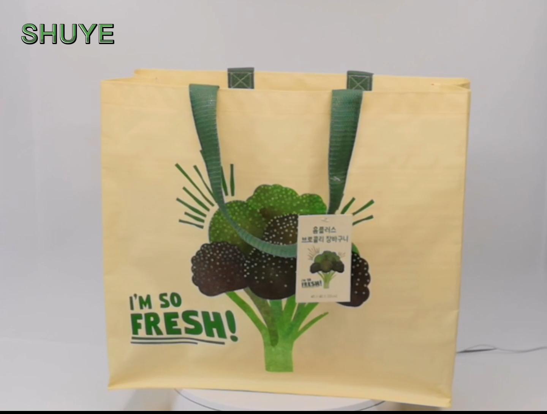 Shopping Bag PP Woven Laminated Bags Custom Printing PP Shopping Bags