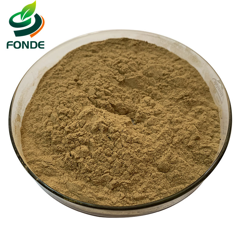 High Quality Water Soluble Instant Black Tea Extract Powder - 4uTea   4uTea.com