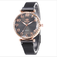 2019 Fashion Golden Watch Women Sky Crown Dial Magnetic Steel Mesh Strap Quartz Beautiful Wrist Watches For Student