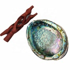 Various Type Paua Abalone shell Crafts For Smudge Kit for Healing