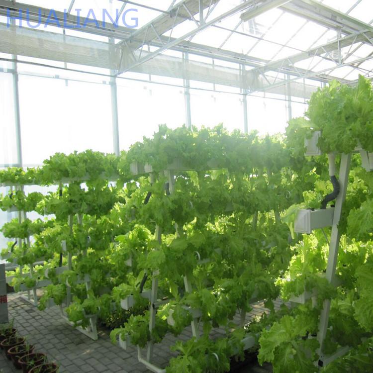 Vertical Hydroponics Farm For Sale