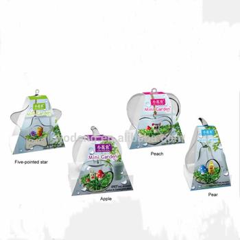 Mini Taman Kaca Kristal Hadiah Bunga Tanaman Buy Tanaman Hias Tanaman Hias Bliss Taman Air Tanaman Tanaman Terarium Unik Tukang Kebun Amethyst Kristal Indoor Taman Bunga Meja Terarium Kit Vas Bunga