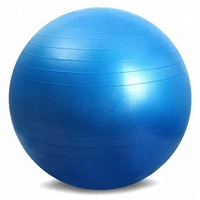 Wholesale Cheap Price Yoga Massage Anti Burst Yoga Balls