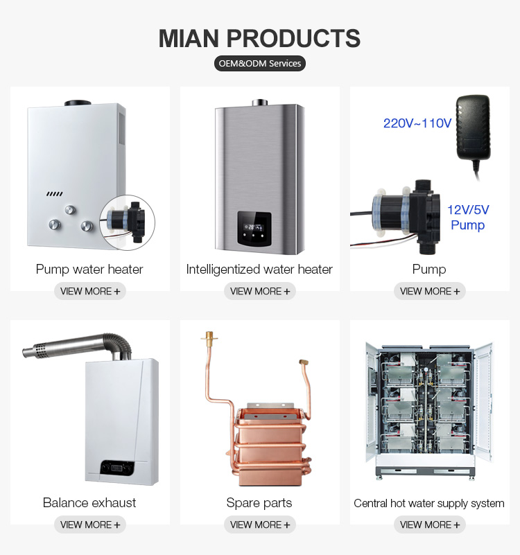 Hot Sale Balance Exhaust Type LPG NG Gas Water Heater With Knob Control