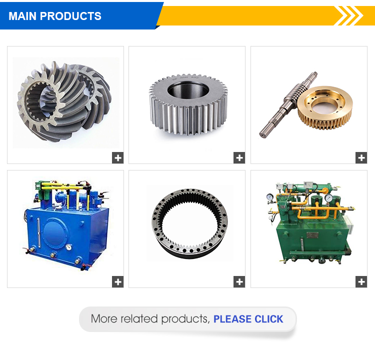2020 Custom Pinion stainless steel Cylindrical Gear