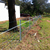 star picket Y post for cattle fence/farm fence