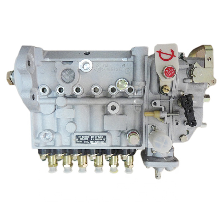 DCEC diesel engine parts Fuel Injection Pump 3973900 for  truck