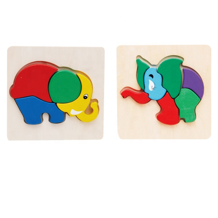 2D Brain Teaser Wooden Kids Educational Puzzle Painting