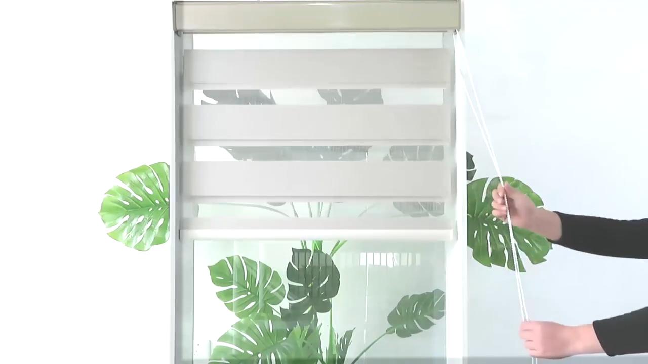 Домашнего декора windows one ручным способом Зонт полиэстера Зебра рулоны шторы для дома