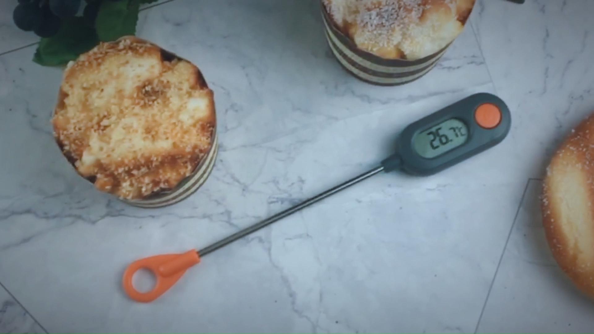 Wholesale Price Digital Coffee Probe Thermometer
