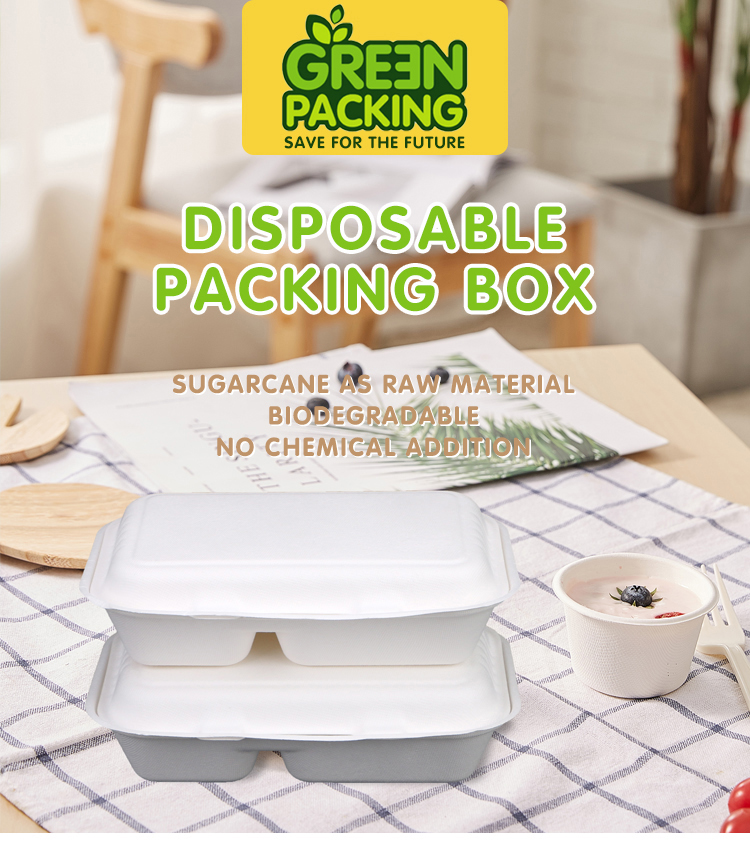 1000ml 2 compartment food container disposable bagasse food box