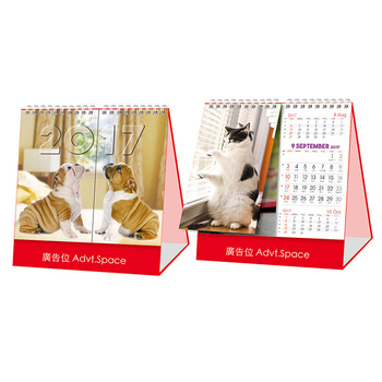 Wholesale daily weekly tear off calendar custom printing
