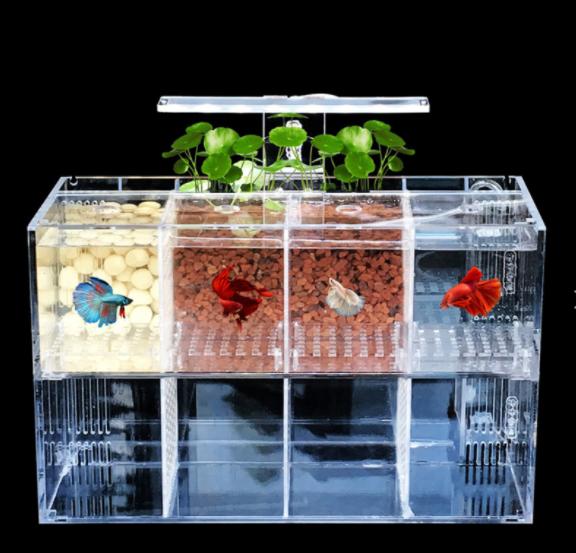 Led multi grille transparente acrylique betta poisson réservoir d'aquarium