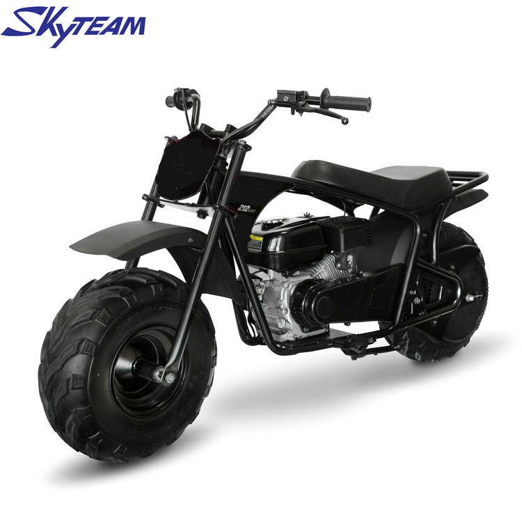 SKYTEAM 220cc two wheel Gas powered Mini Bike Kid Gas Dirt Bike