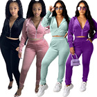 Clothing 2020 Autumn Hot Sale Solid Color Women Tracksuit Set Hooded Women'S Autumn Two-Piece Set Clothing