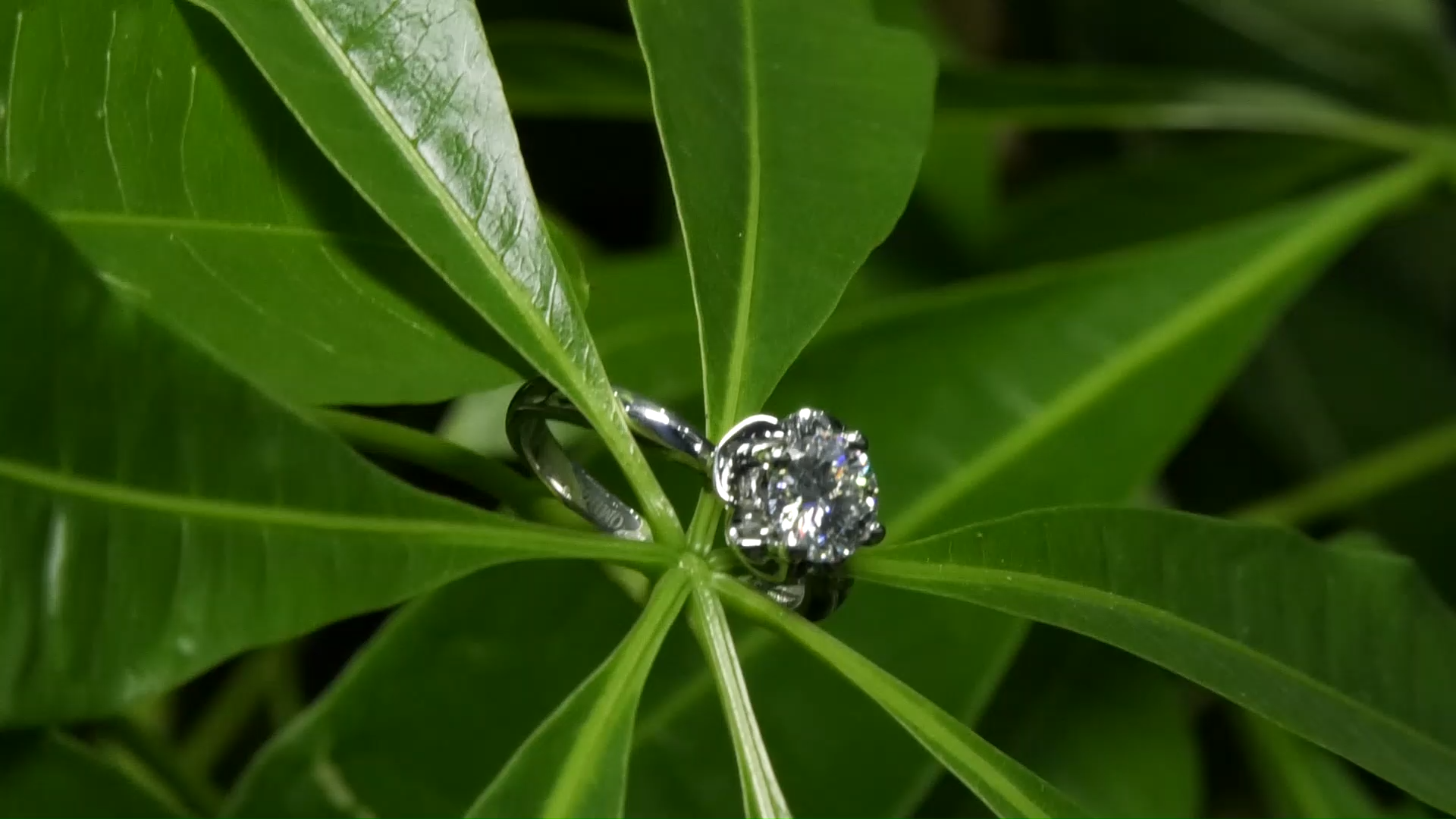 Round Brilliant Cut 1 Ct Moissanite Jewelry for Engagement and Anniversary