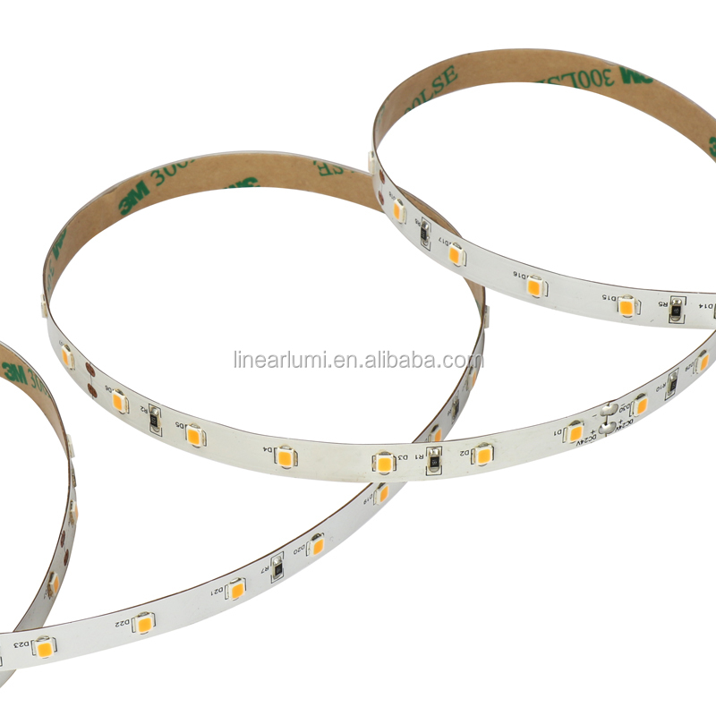ShenZhen 10 Years Manufacturer strip lights  High CRI 24V 2835 SMD Strip Led Light with 4.8w