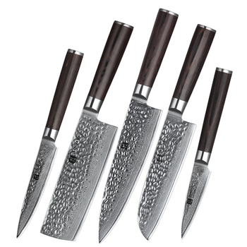 5 pcs professional 67 layers damascus kitchen knife set