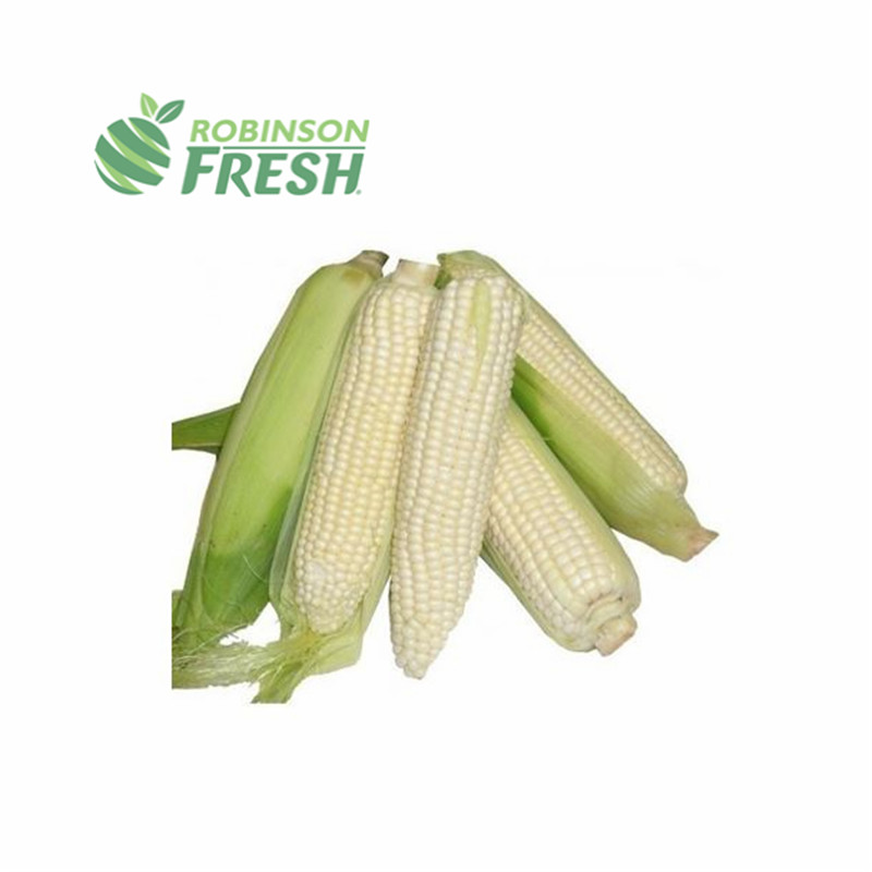 Robinson Fresh US Most Recommended Vegetable Wholesaler Sweet <strong>Corn</strong> Starch White <strong>Corns</strong> Going Green Supply Chain Services Division