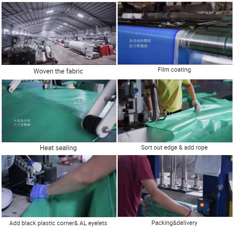 China pe Tarpaulin factory/leno pe tarpaulin&mesh tarpaulin&good quality tarpaulin with eyelets