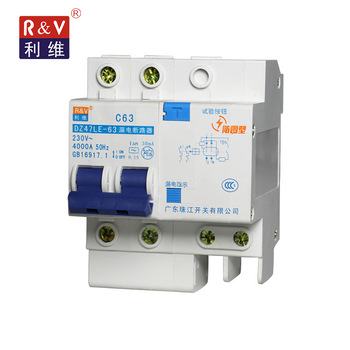 DZ47LE-63 2 Pole RCD 40A 50A 63A earth leakage circuit breakers/residual current device
